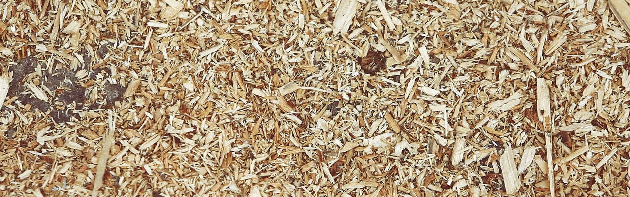 light wood chips on the ground can be used for a variety of projects