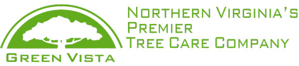 Green Vista Tree Care logo
