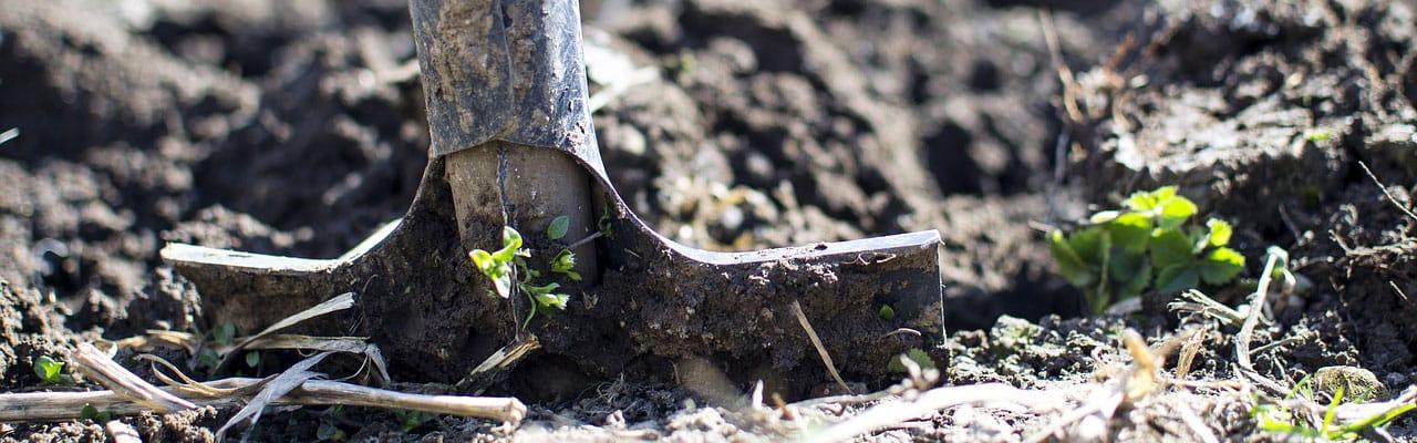 tree planting shovel